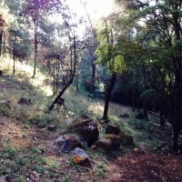 Terreno las Agujas